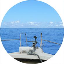 海洋葬業者の流れにおける出港