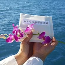 海洋葬業者の流れにおける散骨