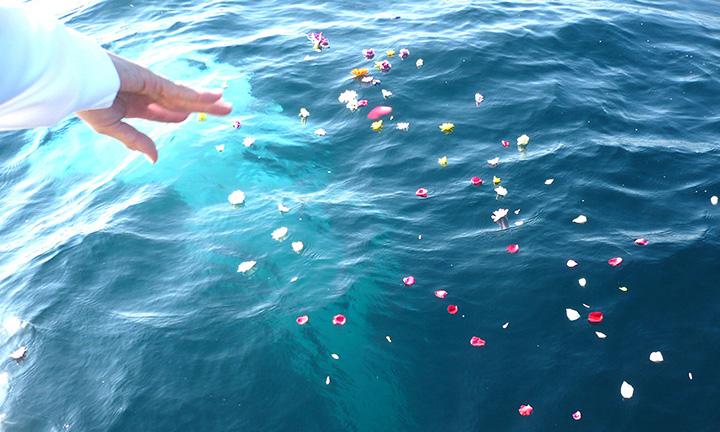 海洋葬の専門業者の葬送