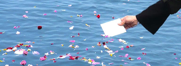 海洋散骨の場所と自治体