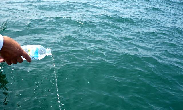 大阪湾での散骨時の献水