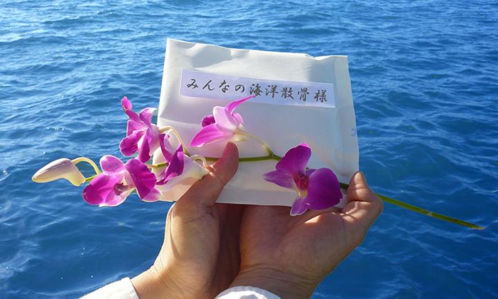 海洋葬の代行プランと料金