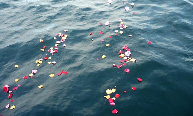 福岡(能古島)沖での散骨の水面の花