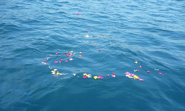 沖縄での散骨の水面の花