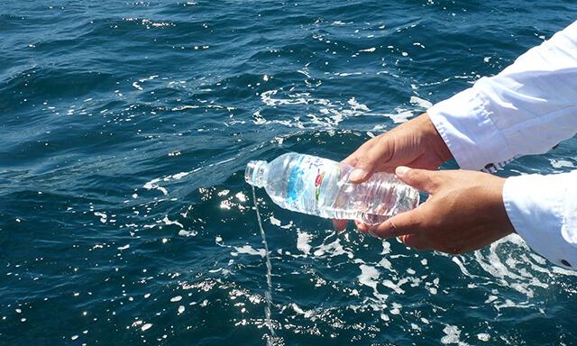 和歌山での海洋散骨の献水