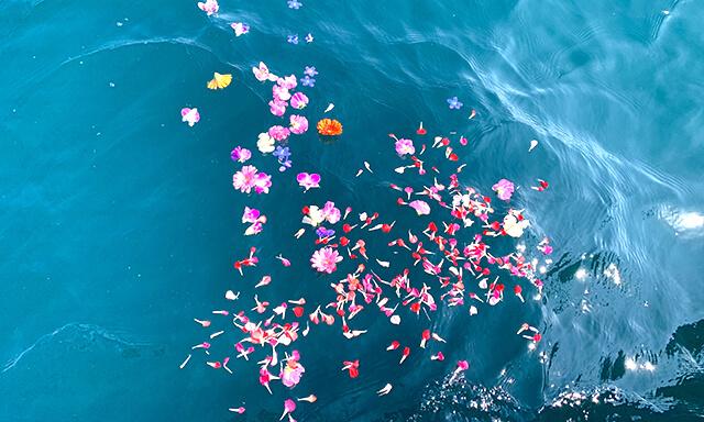 和歌山での海洋散骨事例
