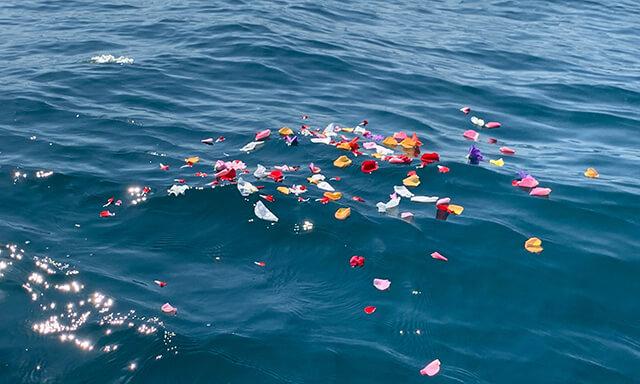 南紀白浜での海洋散骨の献花