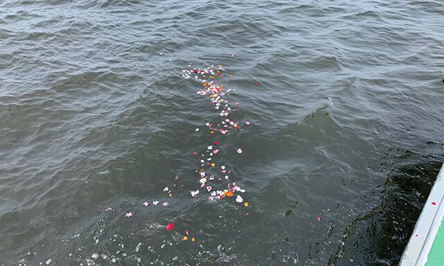 大阪湾での海洋散骨の献花