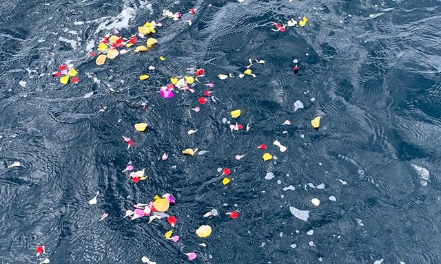 島根沖での海洋散骨の献花