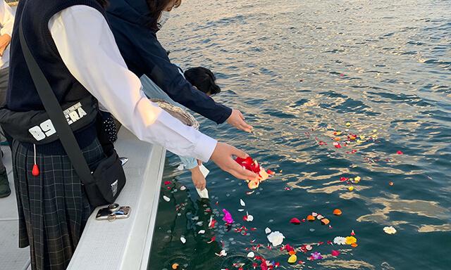 東京湾での貸切乗船散骨