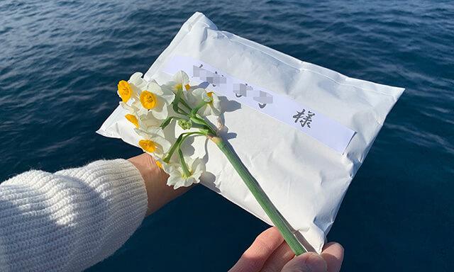 宮崎県での散骨事例